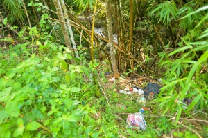 Pantai Hill Orchard - Resort Trash