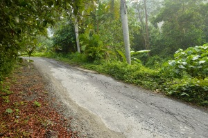 Pantai Hill Orchard - Infrastructure mess