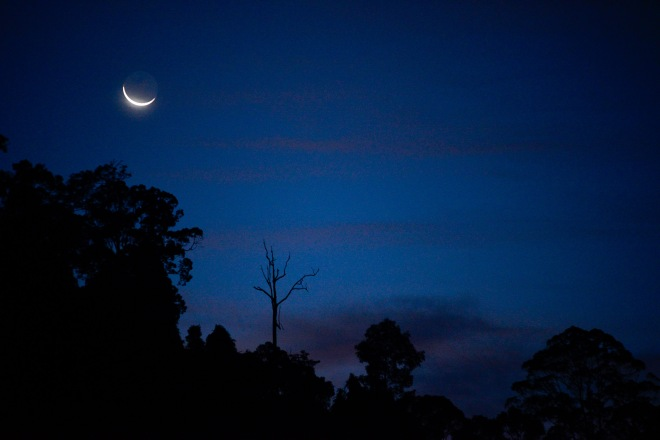 Pantai Hill Orchard Resort moon rise, beauty