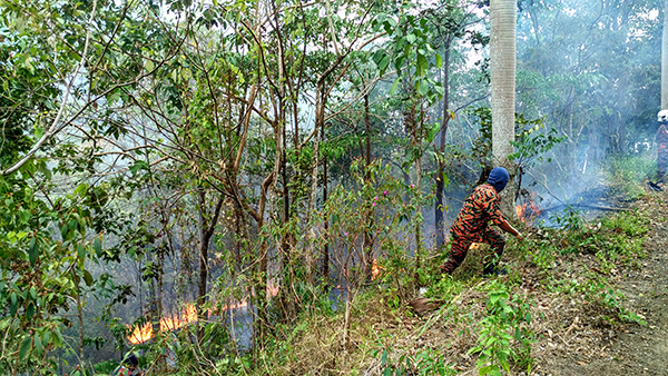 Fire spreading on Pantai Hill Orchard